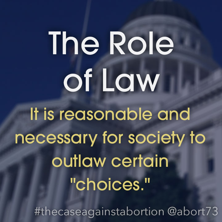 The Role of Law: It is reasonable and necessary for society to outlaw certain