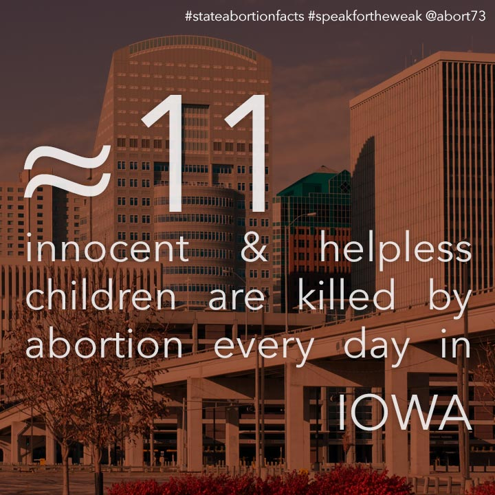 ≈ 8 innocent & helpless children are killed by abortion every day in Iowa